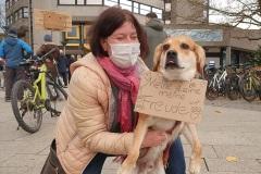 Kundgebung-Rathaus-Hund-Schild-Meine-Leine-meine-Freude