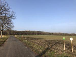 Feld mit wenigen Schildern